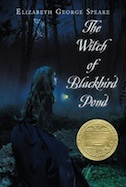 Witch of Blackbird Pond, The